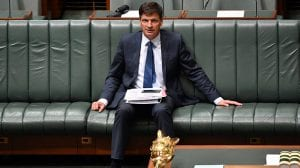 investigation Angus Taylor COP25 Parliament minister energy emissions reduction - optimised