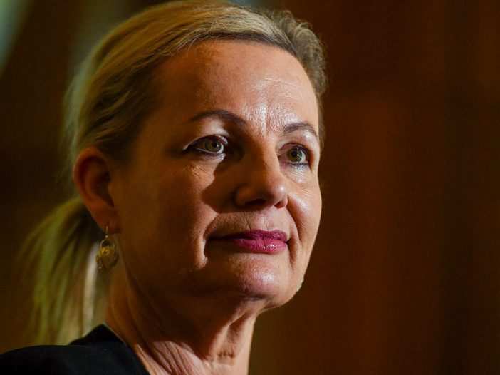 Federal Minister for the Environment Sussan Ley. (AAP Image/Mick Tsikas)