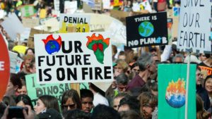 climate change protest signage ipcc report science - mazengarb - optimised